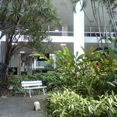 Fazer jardim em prédio