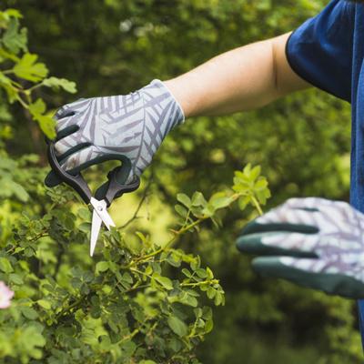 Contratar jardineiro para fazer jardim