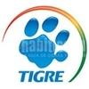 Logo Tigre