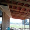 casa de madeira de pinos