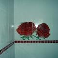 Decoração em  colocação de revestimento no WC!