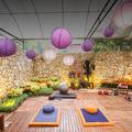 Mostra Expoflora 2016 - Espaço para Atividades Físicas
