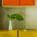 cores dão o charme ao home office tropical