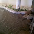 lago com cascata