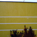 Muro com Grafiato