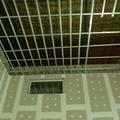 rebaixamento de teto e paredes com isolante