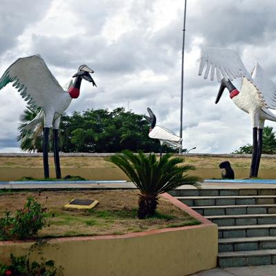 Praça do Tuiuiu