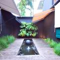 Externa - jardim