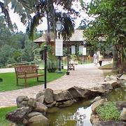 Centro Cultural Casa da Fazenda (Projeto Comercial)