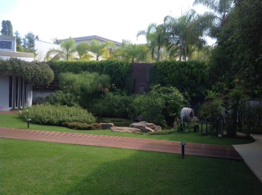Jardim Vertical e Lago artificial