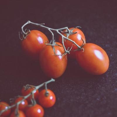 Horta em casa: as melhores espécies de legumes, verduras e frutas para plantar em vaso