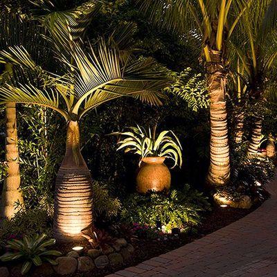 Iluminação para jardim: dicas e truques