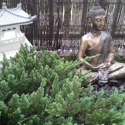 Projeto Sacada - Jardim Japonês