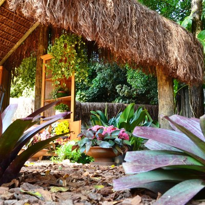 Paisagismo tropical