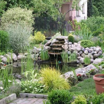 Tudo o que você deve saber para construir um pequeno lago ou tanque artificial em casa