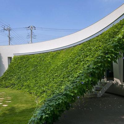Proteja sua casa do sol com cortinas, persianas e vidros especiais