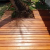 Deck contornando coqueiro