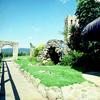 Bizzarri construindo um haras com as cocheiras, a residencia, o piscina e o paisagismo