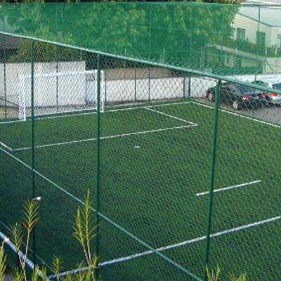 lapa-esportes_458266