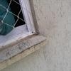 Arrumar infiltração na janela