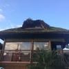 Reparos em telhado de capim santa fé em florianópolis