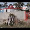 Orçamento de muro vivo para piscina em chacara em campina gde sul (pr)